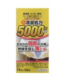 阪本漢法製藥 防風通聖散GOLD 168錠
